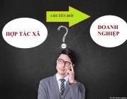 Có được chuyển đổi Hợp Tác xã thành doanh nghiệp?